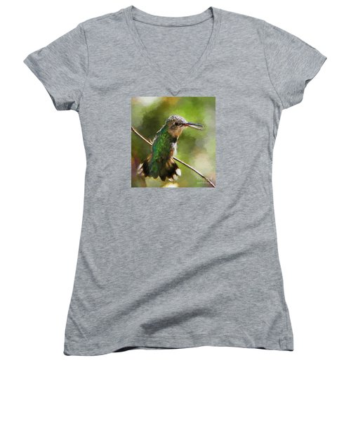 Happy Hummingbird Women's V-Neck (Athletic Fit)