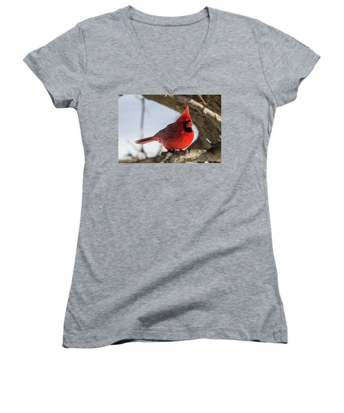 Happy Mister Cardinal Women's V-Neck (Athletic Fit)