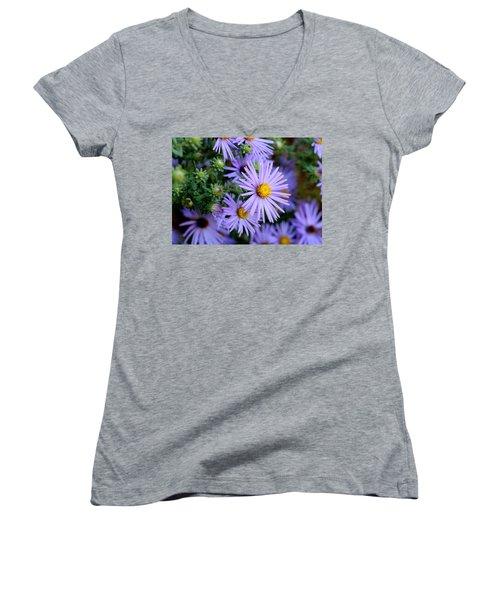 Hardy Blue Aster Flowers Women's V-Neck
