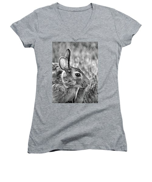 Hare Women's V-Neck (Athletic Fit)
