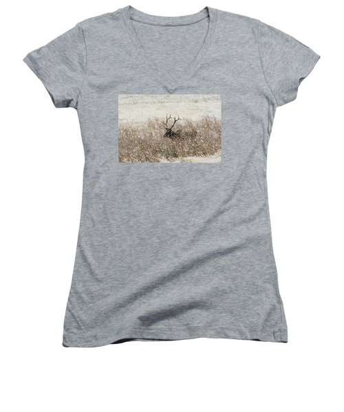 Harem Bull Women's V-Neck T-Shirt