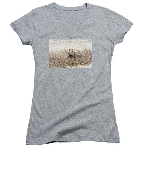 Harem Bull Women's V-Neck T-Shirt