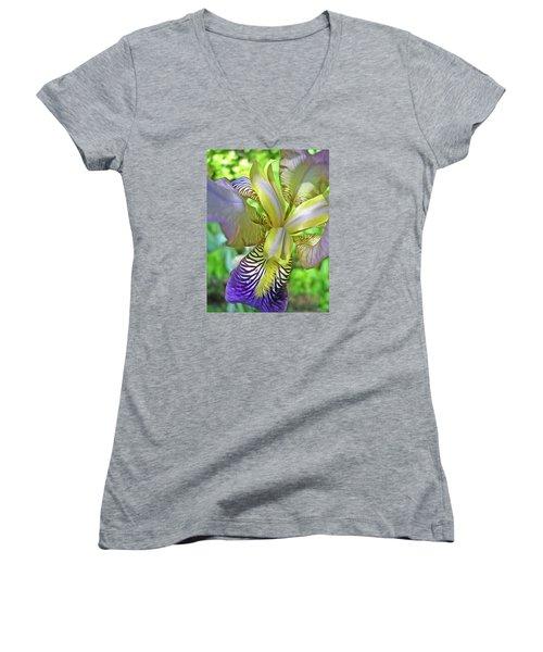 Harmony 4 Women's V-Neck T-Shirt (Junior Cut) by Lynda Lehmann