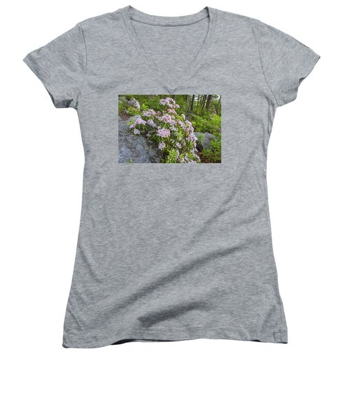 Harriman Pink And White Mountain Laurel Women's V-Neck (Athletic Fit)