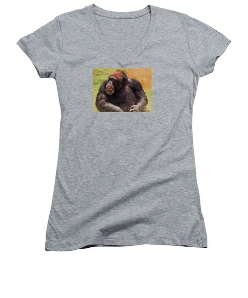 Women's V-Neck T-Shirt (Junior Cut) featuring the painting Harry by Judy Kay