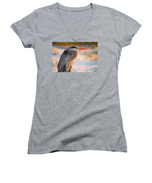 Harry The Heron With Plumage Close-up Women's V-Neck T-Shirt (Junior Cut) by Jeff at JSJ Photography