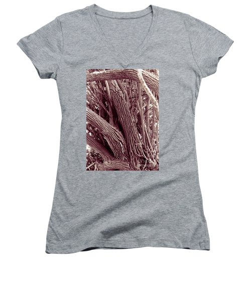 Hau Trees Women's V-Neck T-Shirt (Junior Cut) by Mukta Gupta