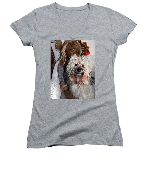 Women's V-Neck T-Shirt (Junior Cut) featuring the photograph Havanese Cutie by Sally Weigand