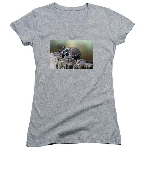 Having A Rest Women's V-Neck T-Shirt