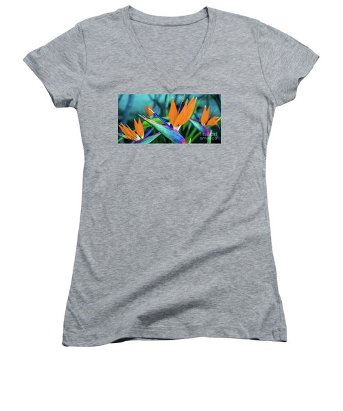 Hawaii Bird Of Paradise Flowers Women's V-Neck