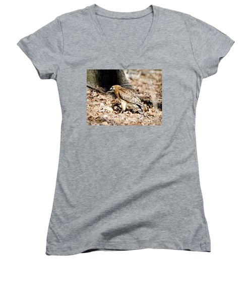Women's V-Neck T-Shirt (Junior Cut) featuring the photograph Hawk And Gecko by George Randy Bass