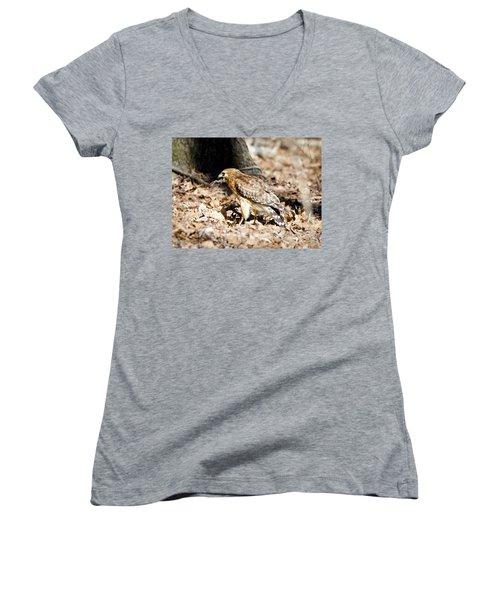Hawk And Gecko Women's V-Neck T-Shirt (Junior Cut) by George Randy Bass