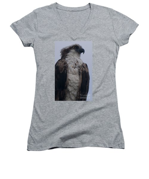 Hawk Looking Into The Distance Women's V-Neck