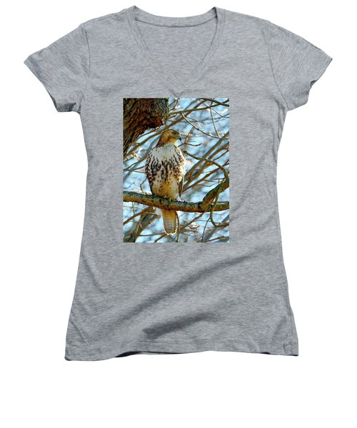 Hawk Women's V-Neck