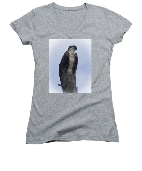 Hawk Pose Women's V-Neck