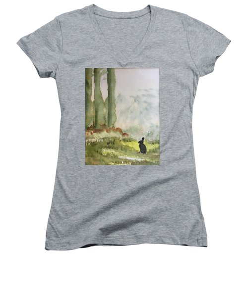 Hazel-rah Women's V-Neck T-Shirt