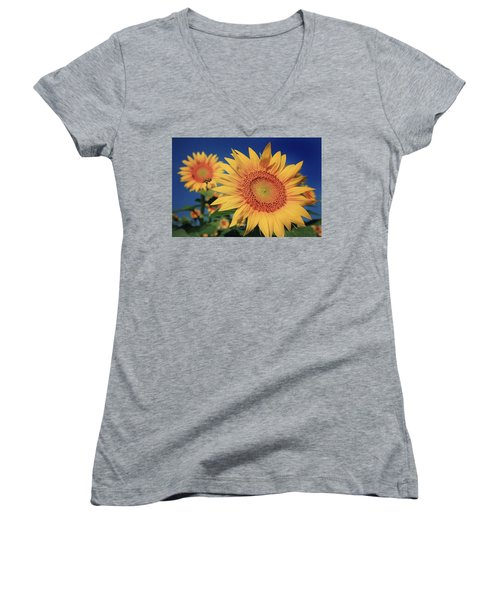 Women's V-Neck T-Shirt (Junior Cut) featuring the photograph Heading For Gold by Chris Berry