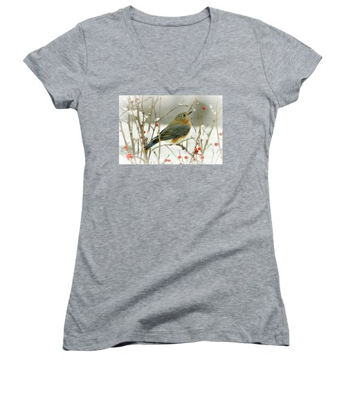 Hearts Desire Women's V-Neck T-Shirt (Junior Cut) by Barbara S Nickerson