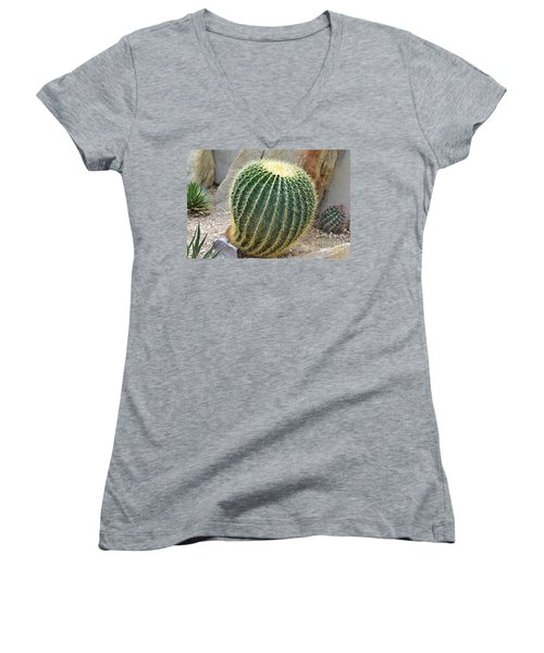 Hedgehog Cactus Women's V-Neck