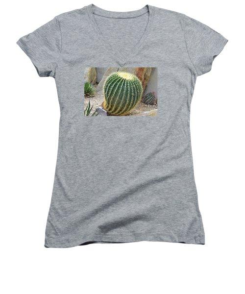 Hedgehog Cactus Women's V-Neck