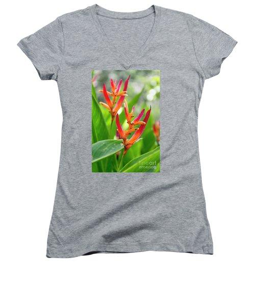 Heliconia Psittacorum Women's V-Neck (Athletic Fit)