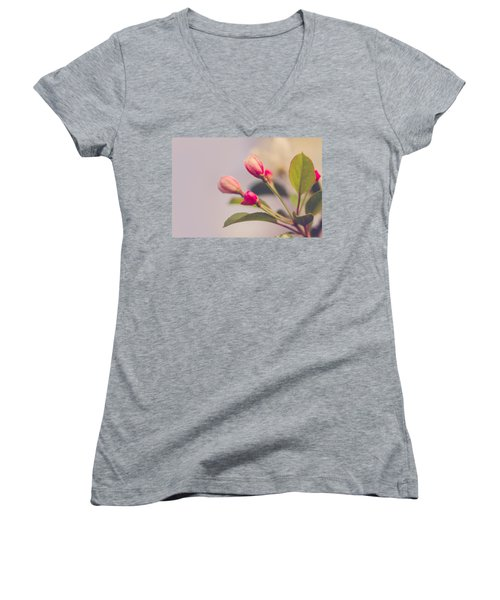 Hello Spring Women's V-Neck (Athletic Fit)