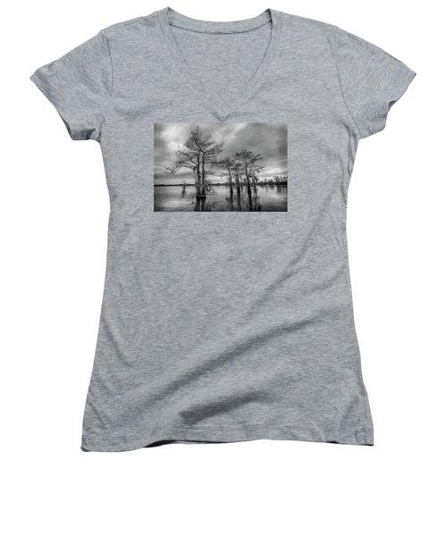 Henderson Swamp Wetplate Women's V-Neck T-Shirt (Junior Cut)
