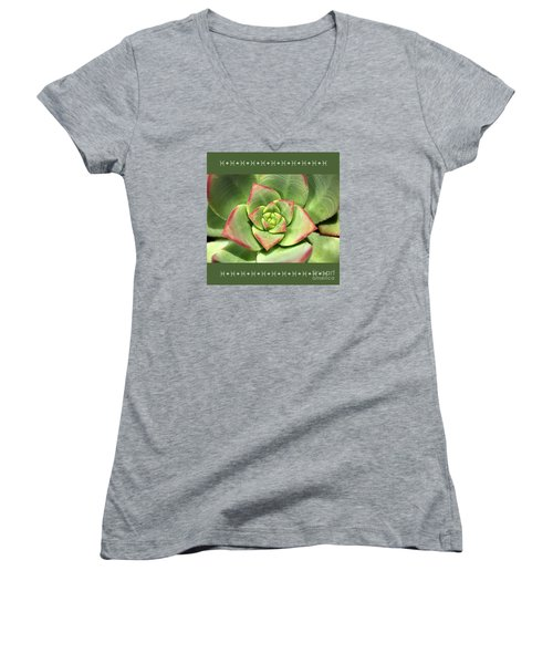 Hens And Chicks Succulent And Design Women's V-Neck T-Shirt (Junior Cut) by Joy Watson