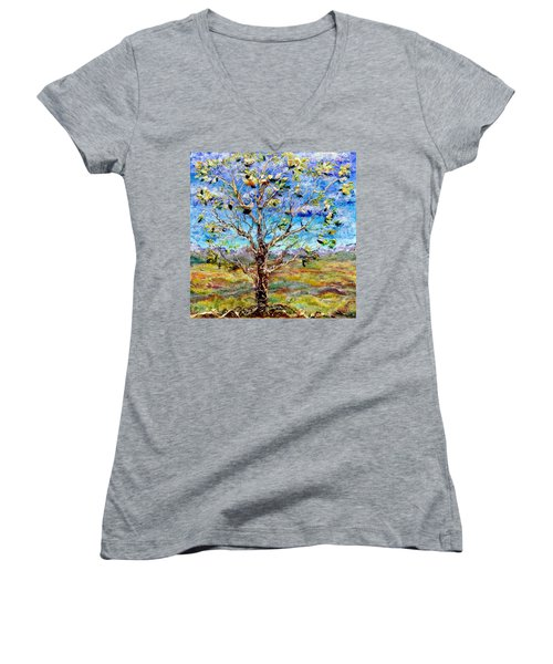 Herald Women's V-Neck T-Shirt (Junior Cut) by Regina Valluzzi