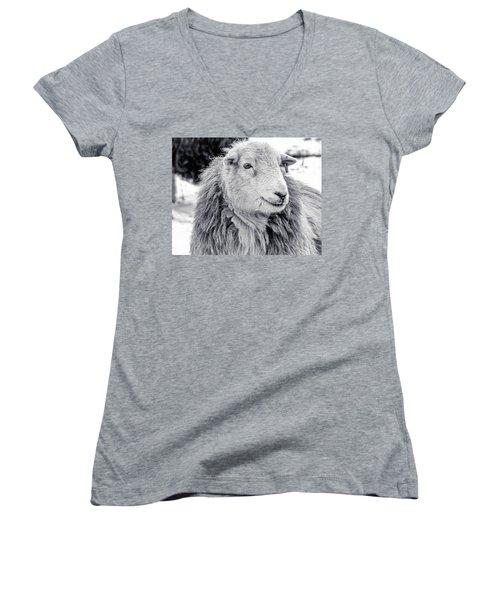 Herdwick Sheep Women's V-Neck T-Shirt (Junior Cut) by Keith Elliott