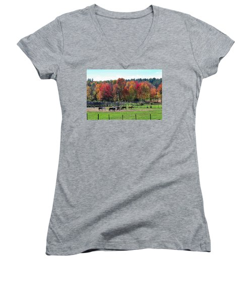 Heritage Farm In Easthampton, Ma Women's V-Neck