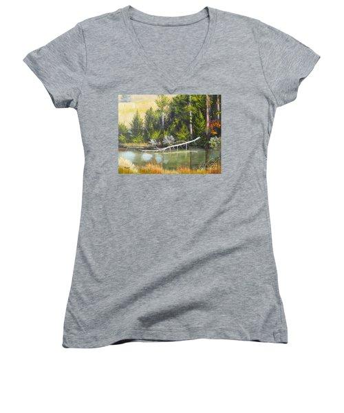 Heron Perch Women's V-Neck T-Shirt