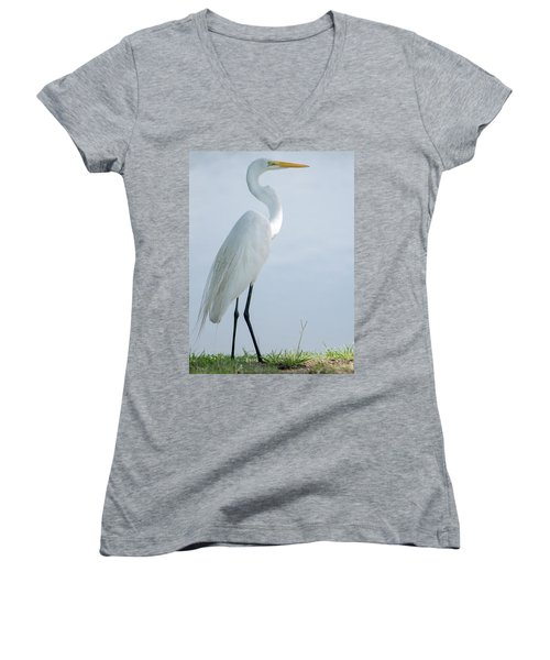 Heron  Women's V-Neck (Athletic Fit)