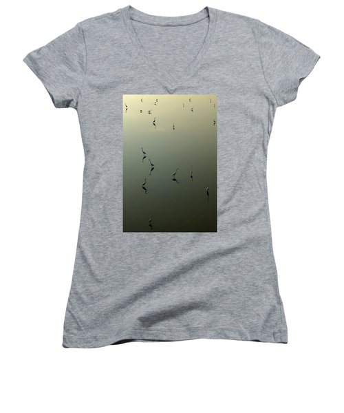Herons On Lake 367 Women's V-Neck
