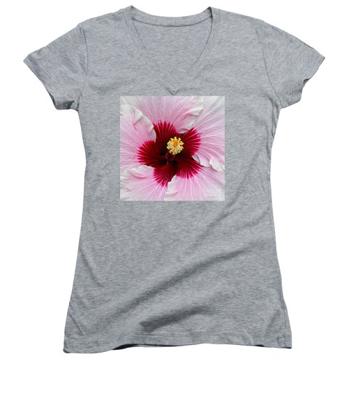 Hibiscus With Cherry-red Center Women's V-Neck T-Shirt (Junior Cut)