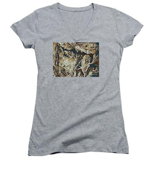 Hidden In Plain Sight Women's V-Neck T-Shirt