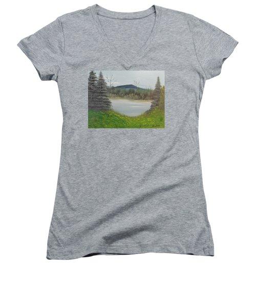 Hidden Pond  Women's V-Neck T-Shirt (Junior Cut) by Thomas Janos