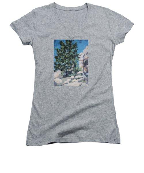 Hidden Valley Women's V-Neck T-Shirt (Junior Cut) by Richard Willson