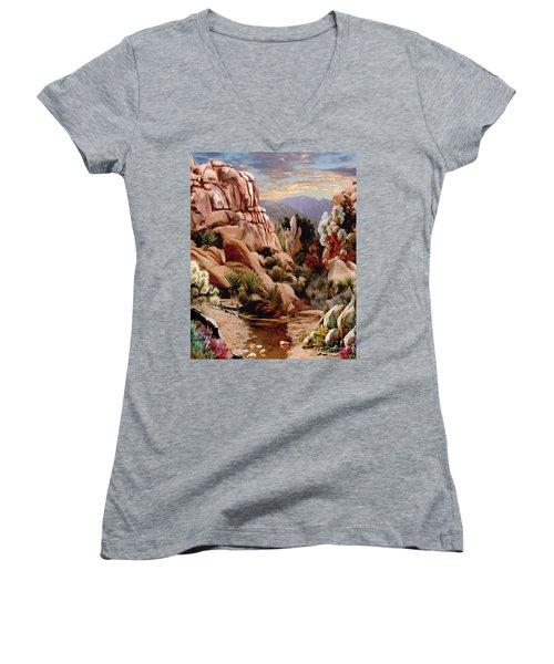 Hidden Valley Trail Women's V-Neck T-Shirt (Junior Cut) by Ron Chambers