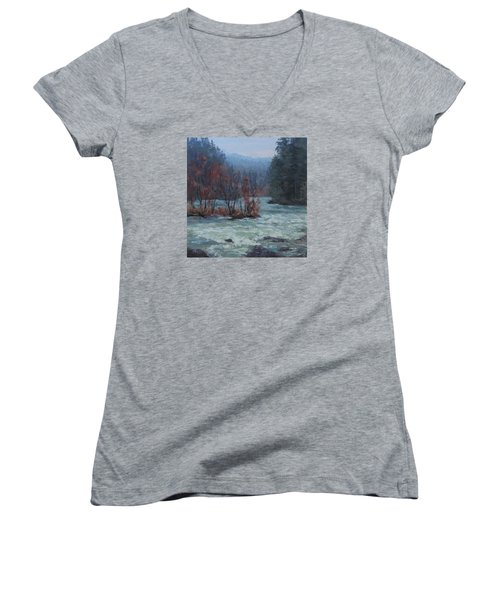 Women's V-Neck T-Shirt (Junior Cut) featuring the painting High Water by Karen Ilari