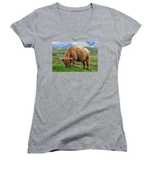 Highland Cow Women's V-Neck T-Shirt (Junior Cut) by Anthony Dezenzio