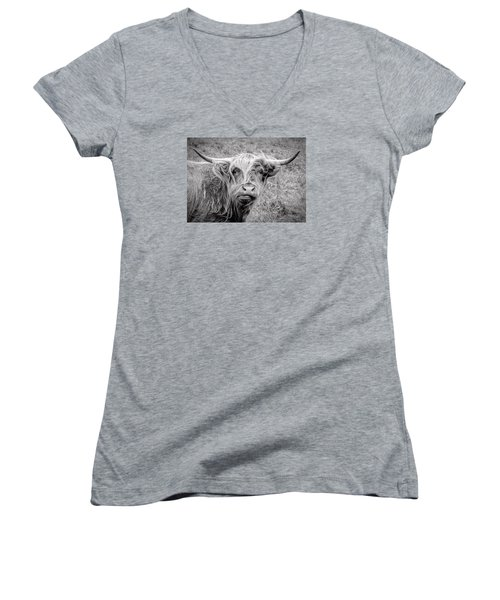Highland Cow Women's V-Neck T-Shirt (Junior Cut) by Jeremy Lavender Photography