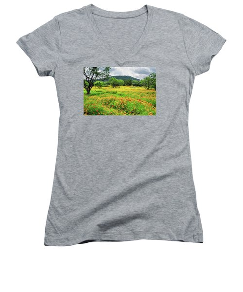 Hill Country Wildflowers Women's V-Neck T-Shirt (Junior Cut) by Lynn Bauer