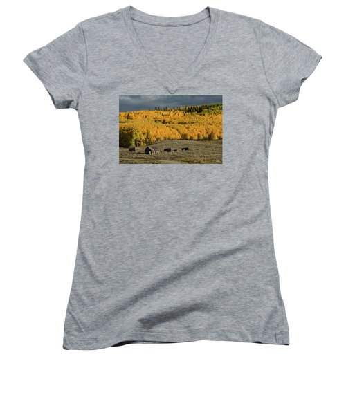 Women's V-Neck T-Shirt (Junior Cut) featuring the photograph Hills Afire by Dana Sohr