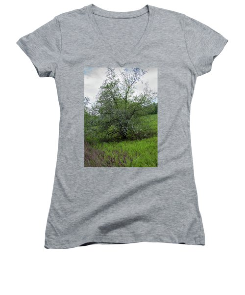 Hillside Lady Women's V-Neck T-Shirt