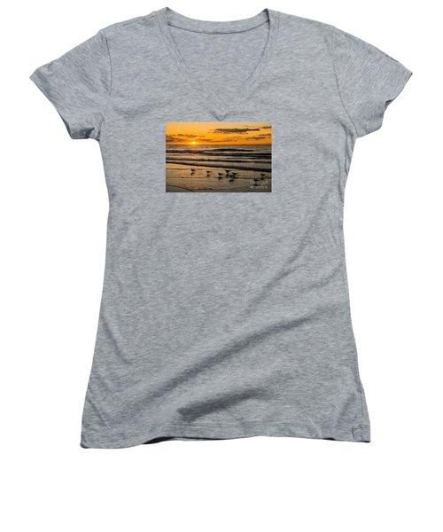 Hilton Head Seagulls Women's V-Neck T-Shirt (Junior Cut) by Paul Mashburn