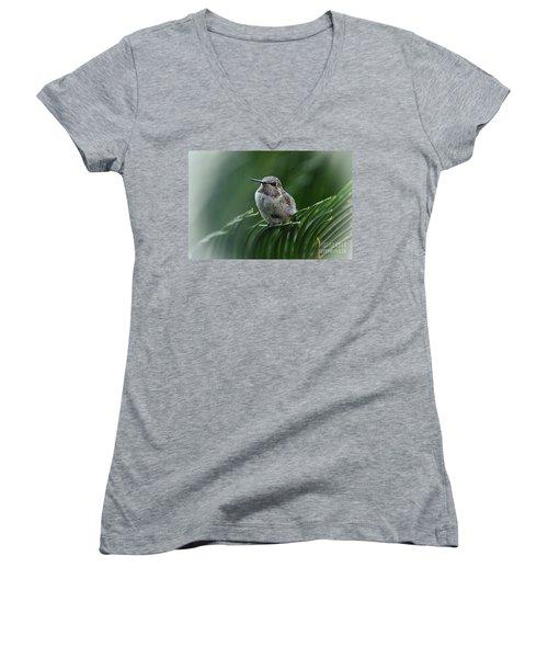 Hint Of Purple Women's V-Neck T-Shirt