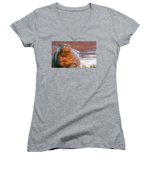 Hippo Snacks Women's V-Neck (Athletic Fit)