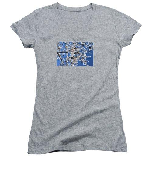 Hoar Frost Women's V-Neck T-Shirt (Junior Cut) by Dacia Doroff
