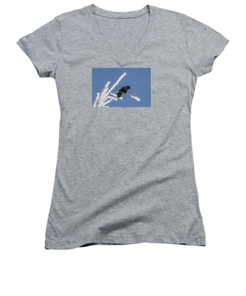 Hoarfrost And The Crow Women's V-Neck T-Shirt (Junior Cut) by Alana Thrower